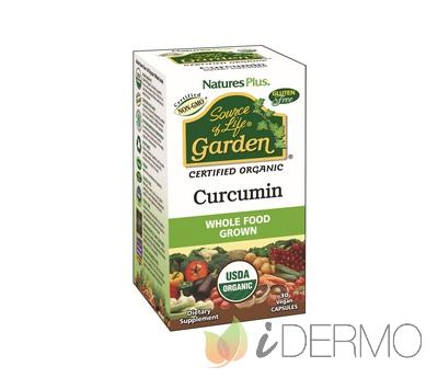 GARDEN CURCUMA